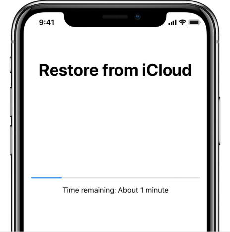 Recover Data from iCloud Backup