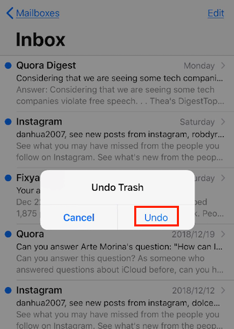 Recover Deleted Emails on iPhone iPad by Undo - Step 2