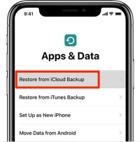 How to Recover Deleted Voice Memos on iPhone X/8 with iCloud
