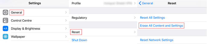 Reset iPhone to Erase Restriction
