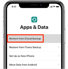 Restore from iCloud Backup