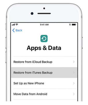 Restore Data from an iTunes Backup File
