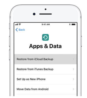 Restore Data from an iCloud Backup