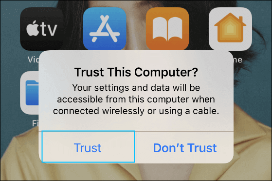 """Select """"Trust"""" on Your iPhone"""
