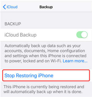 Choose Stop Restoring iPhone