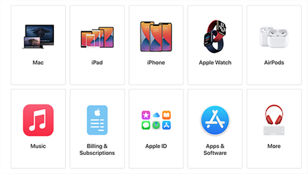 Support For Apple ID
