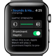 Turn on Haptic Option on Your Apple Watch