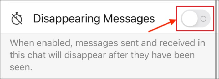Toggle on the Disappering Messages