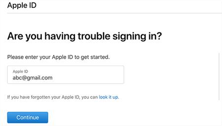 Type Your iCloud ID