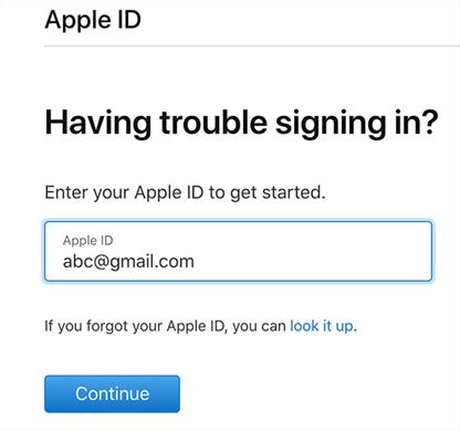 Input your Apple ID