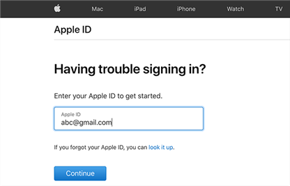 Type your Apple ID email