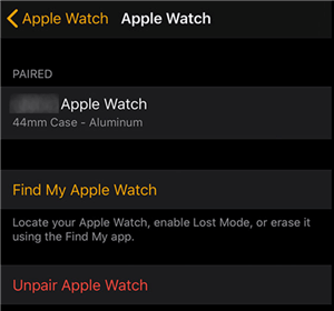 View The Apple Watch Details