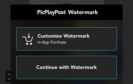 Watermark options