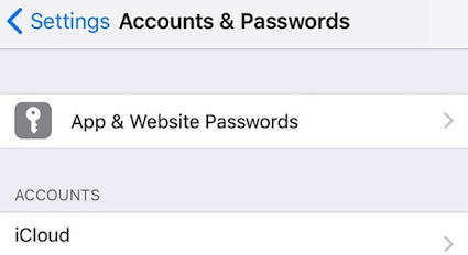 View App and Website Passwords in Keychain on iPhone/iPad