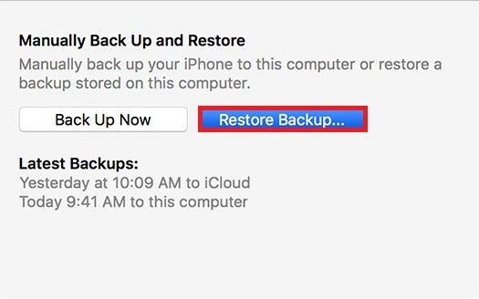 How to Restore iPhone from Backup -Step 8
