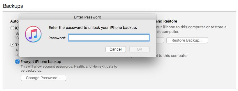 Enter the Password to Restore iPhone Backup