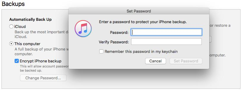 Set a Password to Protect iPhone Backup