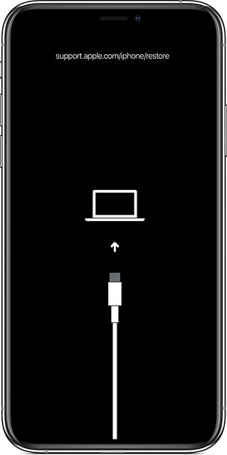 Enter Recovery Mode on the iPhone