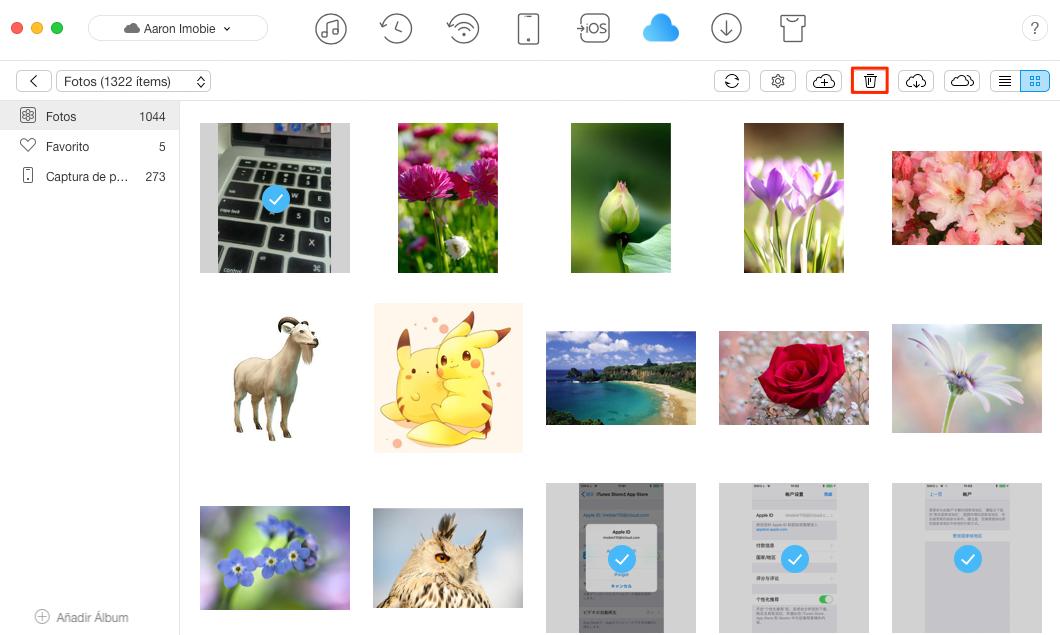 Borrar Fotos iCloud