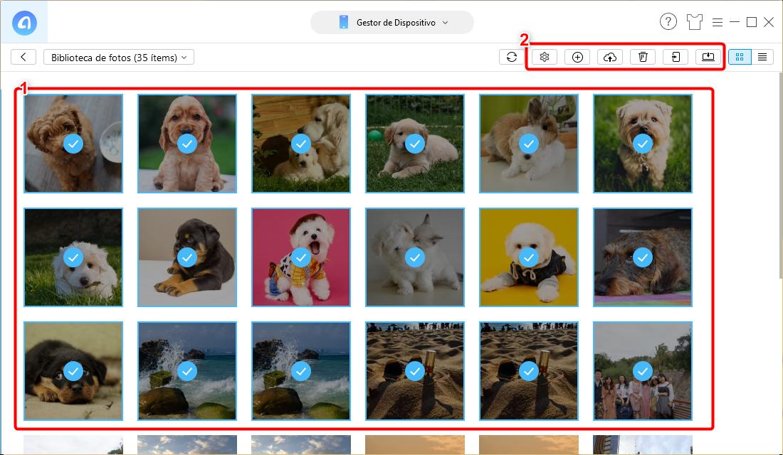 Cómo organizar fotos en iPhone/ iPad - Paso 3