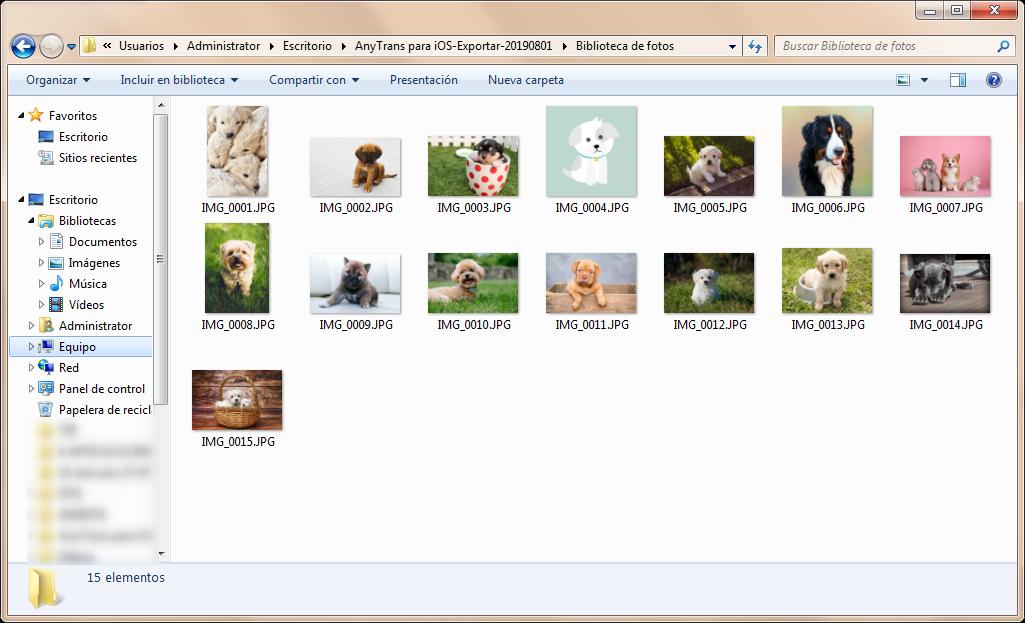 Ya las fotos etán en tu PC