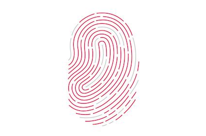 Problemas de Touch ID en iOS 13