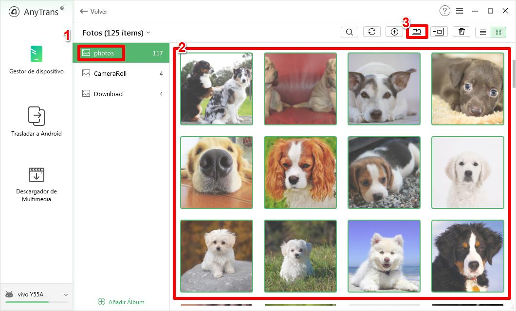 Cómo pasar fotos de Android a PC fácilmente – Paso 3