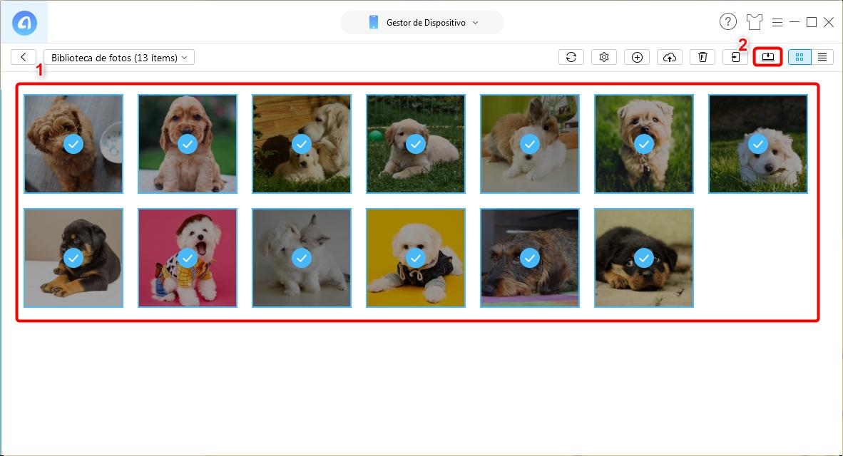Pasar fotos de iPhone a PC selectivamente - Paso 3