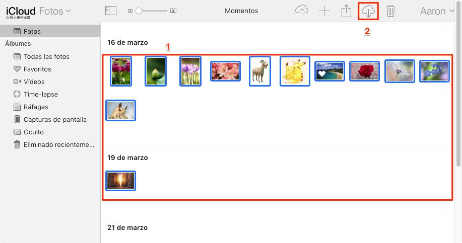 Cómo pasar iCloud a Google Drive - Paso 2