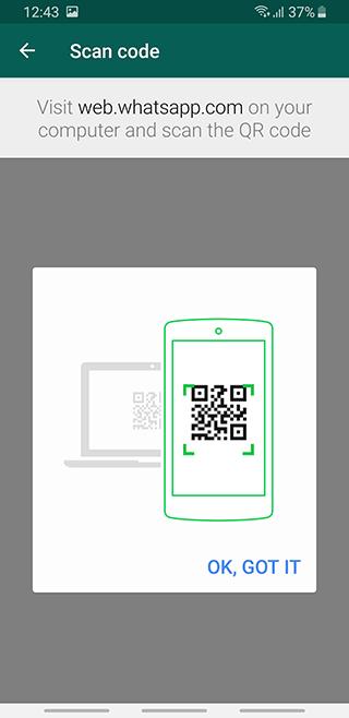 Recuperar fotos borradas del WhatsApp desde navegador