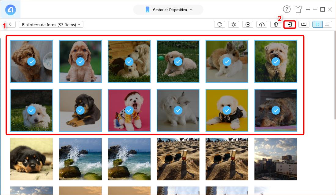 Cómo sincronizar  fotos de iPhone a iPad fácilmente - Paso 3