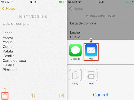 Cómo pasar notas de iPhone a PC por correo