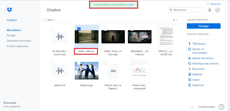Solution pour Dropbox impossible d'afficher l'aperçu d'un fichier