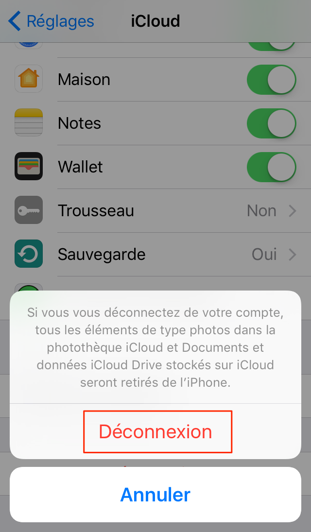 Comment supprimer un compte iCloud iPhone/iPad/iPod touch – étape 3