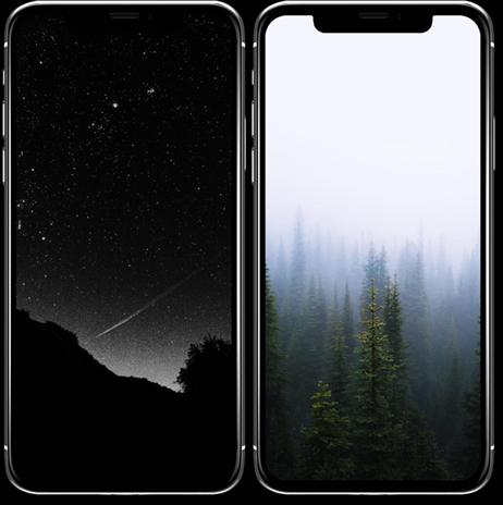 Fond d'écran sur la nature iPhone X