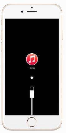 Restaurer l'iPhone en mode de récupération