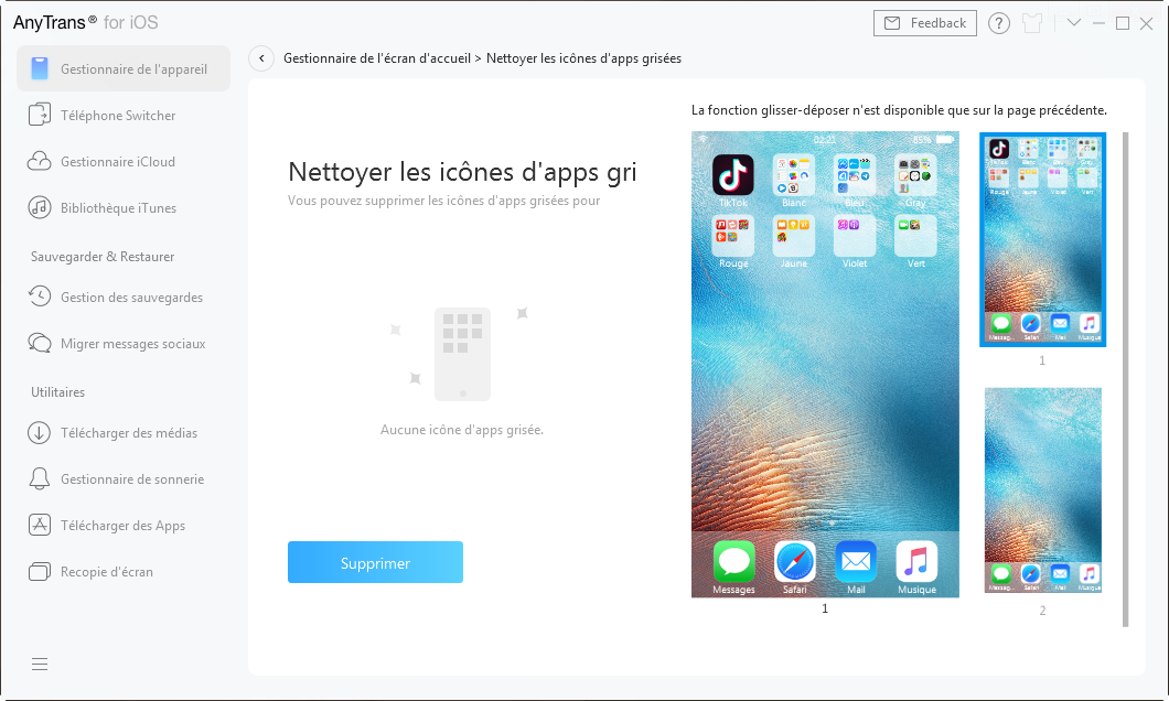 Nettoyer les icônes d'apps grisées