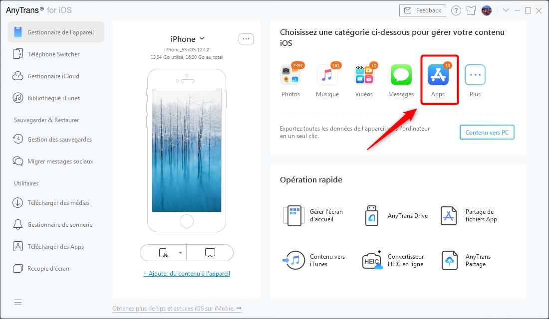 Cliquer sur l'icône Apps