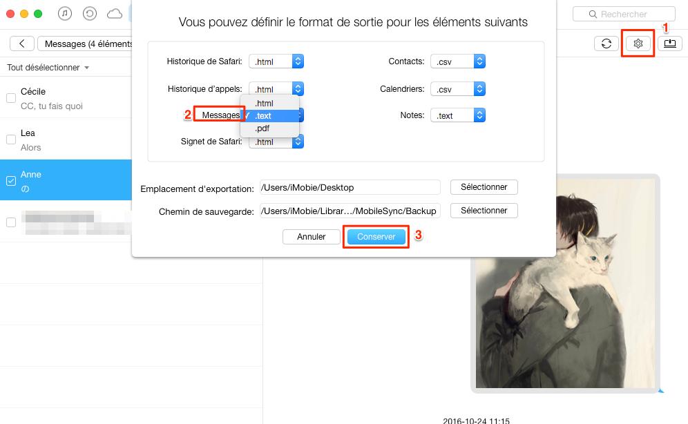 Enregistrer messages iPhone au format texte brut, pdf ou html - étape 2