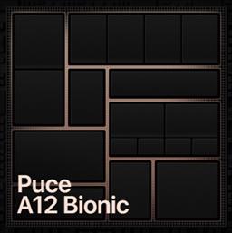 Puce A12 Bionic