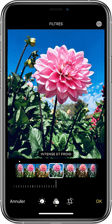 Filtre photo iPhone