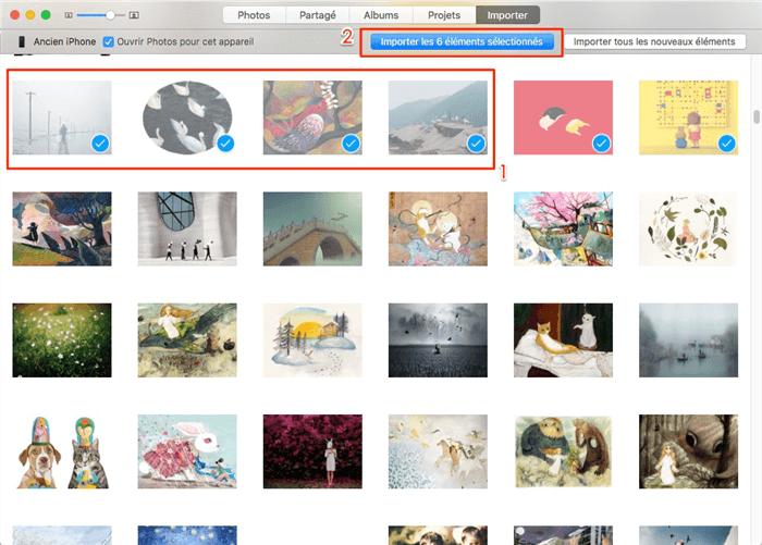 Comment importer les photos iPhone vers Mac