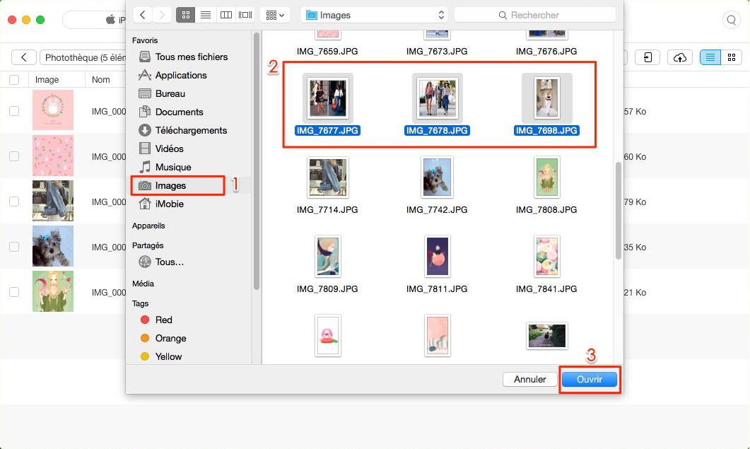 Comment mettre facilement les photos sur votre iPad – étape 3