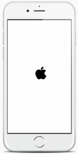iPhone est bloqué sur logo Apple iOS 11