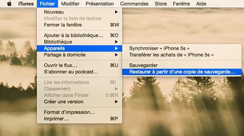 Restaurer des données perdues après la mise à jour depuis une sauvegarde iTunes