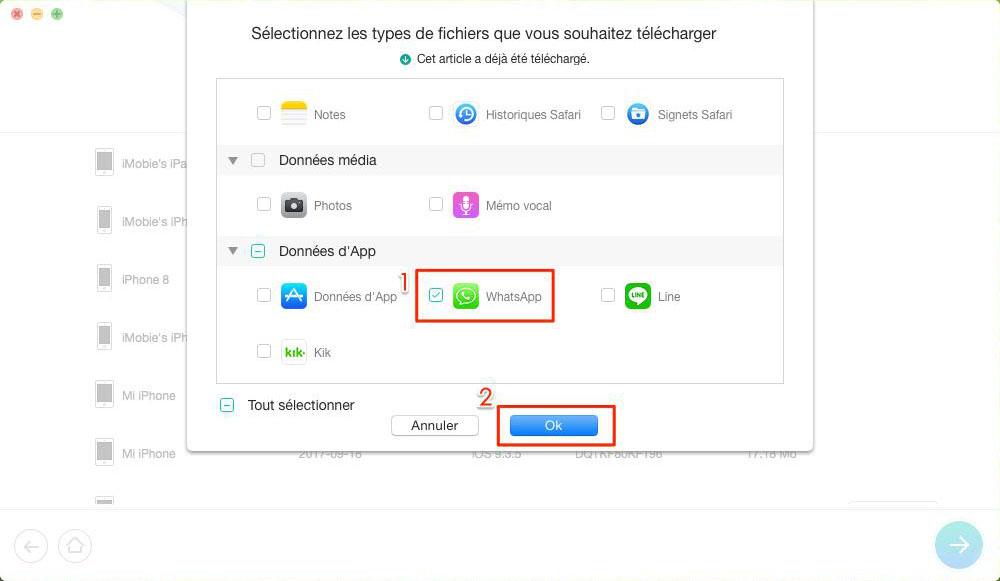 Comment récupérer les conversations de WhatsApp depuis iCloud – étape 3