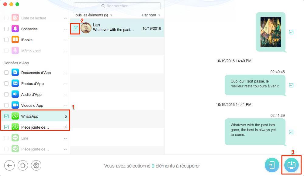 Récupérer les WhatsApp depuis sauvegarde iCloud – étape 4