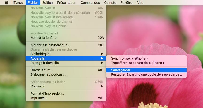 Comment sauvegarder votre iPhone avec iTunes