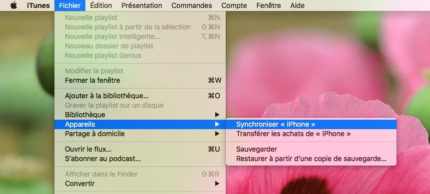 Comment synchroniser votre iPhone avec iTunes