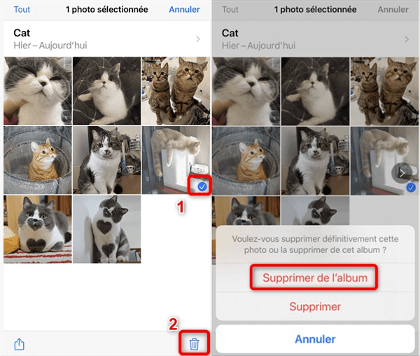 Suppression des photos